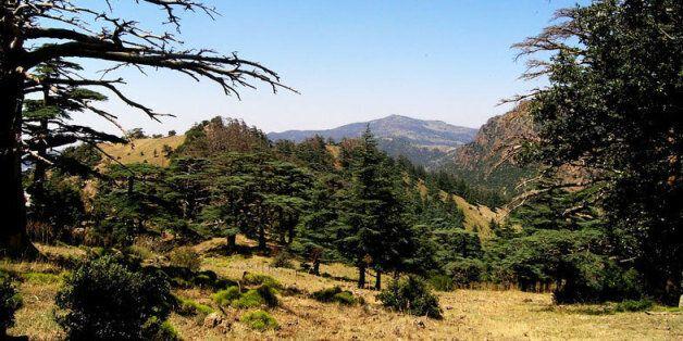 Batna: le parc Belezma intégré au Réseau mondial des réserves de biosphère de l'UNESCO