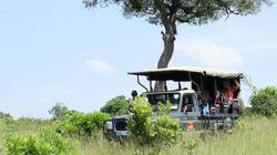Périple au Kenya, l'Afrique magique