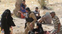 Contre-attaque irakienne depuis la prise de Ramadi par