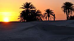 Tunisie-France: Une relation au beau