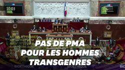 L'accès de la PMA aux hommes transgenres rejeté à