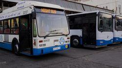 Transports urbains à Alger: du Wi-Fi dans les autobus de
