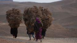 Plongée dans le Maroc des femmes