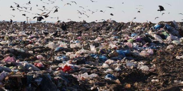 Ce que coute la pollution au