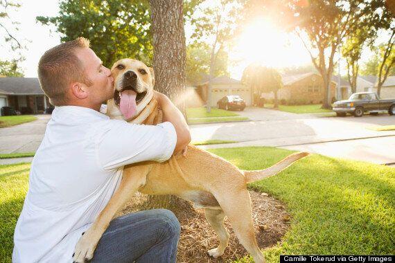 Votre chien vous connaît mieux que personne, en voici 9 signes