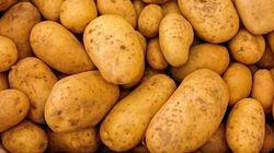 Des producteurs américains de patates lorgnent le marché