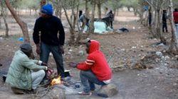 1.200 migrants subsahariens expulsés du camp de Gorougou près de