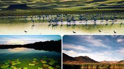 L'Algérie abrite près de 1.500 zones humides dont 50 sites