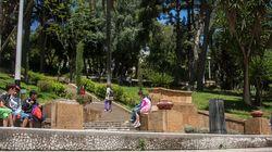 Des associations se mobilisent pour nettoyer les espaces verts