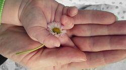 Tel un écho sans fin: L'amour pour son