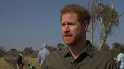 Prince Harry: 'How Can Anyone Deny Climate