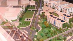 Les travaux de l'Université Mohammed VI des sciences de la santé ont commencé. Conditions d'accès, tarifs, cursus... On fait...
