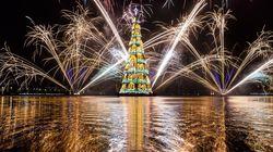 Rio inaugure son arbre de Noël flottant, le plus grand au