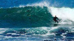 Ce surfer l'a échappé belle