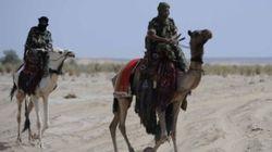 Algérie-Libye: Les méharistes, pisteurs de