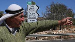 Palestine: Les olives palestiniennes dépérissent à l'ombre des