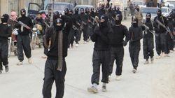 Interpol remet à l'Algérie une liste de probables combattants de