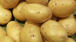 Agriculture: Les prix de la pomme de terre en
