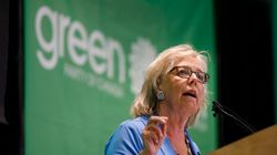 Greens Would Defeat a Minority Government If It Backed Pipelines:
