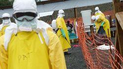 Un Guinéen guérit d'Ebola au