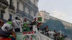 Retour triomphal des verts à Alger
