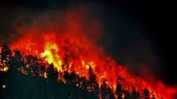 Des centaines d'hectares ravagés par les flammes à travers le