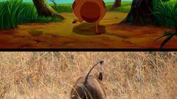 En vacances au Kenya, il a pris les mêmes photos que dans le Roi