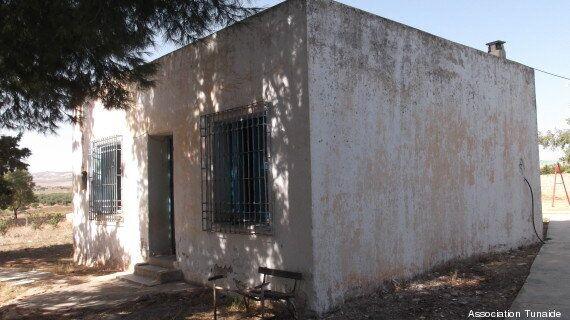 Tunisie - Écoles primaires dans les régions: Le parcours du
