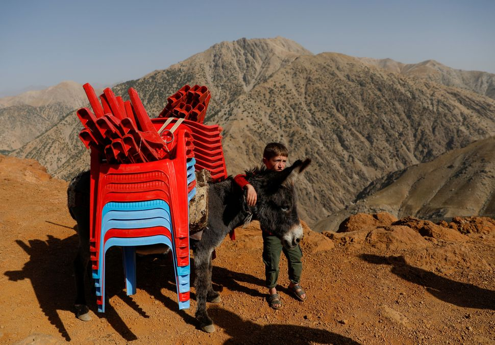 An Afghan boy stands with a donkey loaded election material, to be transported to polling stations which...