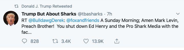 "Screen shot of Trump's retweet of message attacking ""pro shark media"""