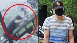 경의선 숲길 고양이 살해한 남성이 첫 재판에서 한