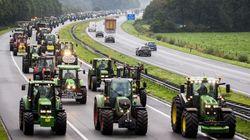 Aux Pays-Bas, des agriculteurs en tracteurs provoquent des bouchons