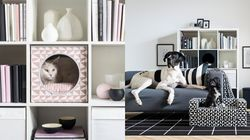 We Are LURVIG Everything From IKEA's New Pet