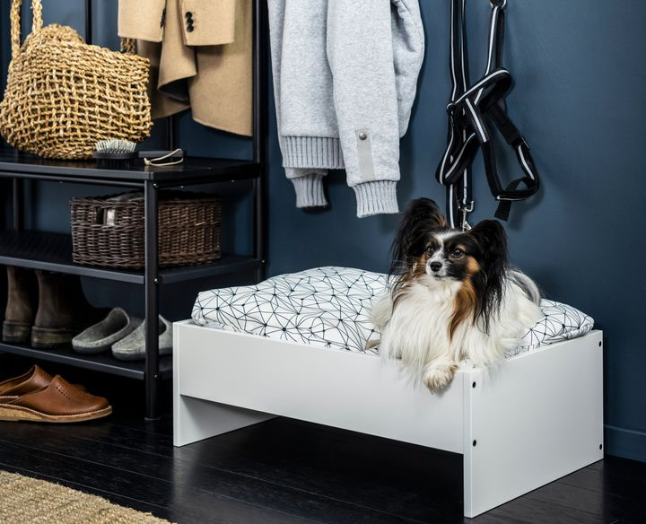 The latest in pet furniture: pieces that fit a home's decor.