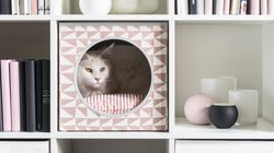 Crap, Now We Have To Worry About Buying Pet Furniture That Looks As Nice As Real