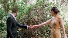 この新郎新婦の結婚写真撮影が中断による視線の愛らしい生き物
