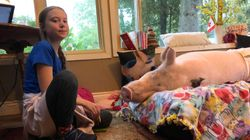 Greta Thunberg Meets Canada's Most Famous