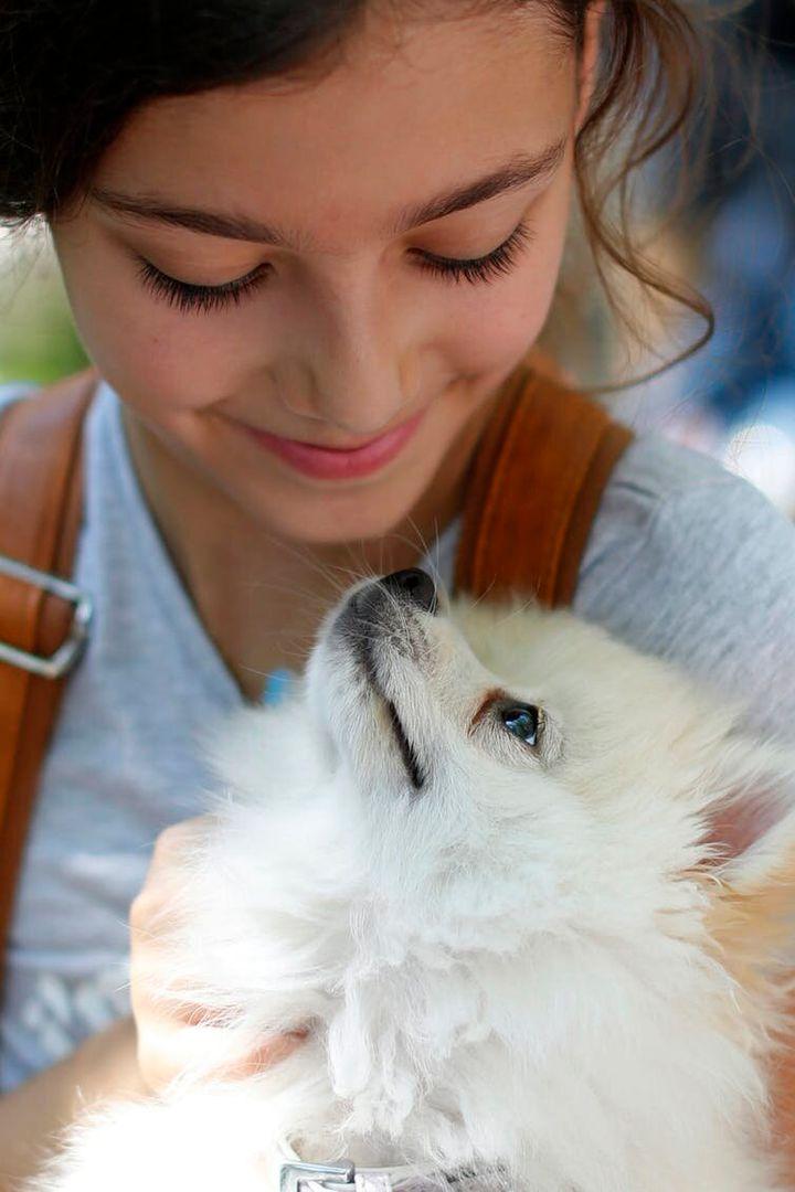 """<i>Una ni&ntilde;a con su perro en la 10.&ordf; Exhibici&oacute;n Anual Canina, el pasado mes de junio en Beirut. Es posible que podamos interpretar la cara de los perros con facilidad porque evolucionaron junto al ser humano durante m&aacute;s de 100.000 a&ntilde;os.&nbsp;<a href=""""http://www.cpimages.com/fotoweb/cpimages_details.pop.fwx?position=131&amp;archiveType=ImageFolder&amp;sorting=ModifiedTimeAsc&amp;search=dog&amp;fileId=7ED4E565C8CEED276553137C3F07278F0211563F5E7047DF3AAB663AE59BB0CF1642B0B80D34257E6710EC2568FB7698B59B4D70A14C35A5085499F7776FCE74F2B7765E8750034730859FC82D50AED991D2D934849019DFB3B41BCC634D8CD042F841C1FF39A6F82A1B1FF576DC98DFDFA8B4906E2B2637CA6ABE2F54441DF0E41DB96B4682A54674266B70D538C8384B7097AA1ED5BA40"""" rel=""""nofollow"""" data-ylk=""""subsec:paragraph;itc:0;cpos:27;pos:1;elm:context_link"""" data-rapid_p=""""14"""" data-v9y=""""1"""">(AP Photo/Hassan Ammar)</a></i>"""