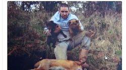Ποινή φυλάκισης σε άνδρα που αγόραζε γάτες ως ζωντανό δόλωμα για τα σκυλιά
