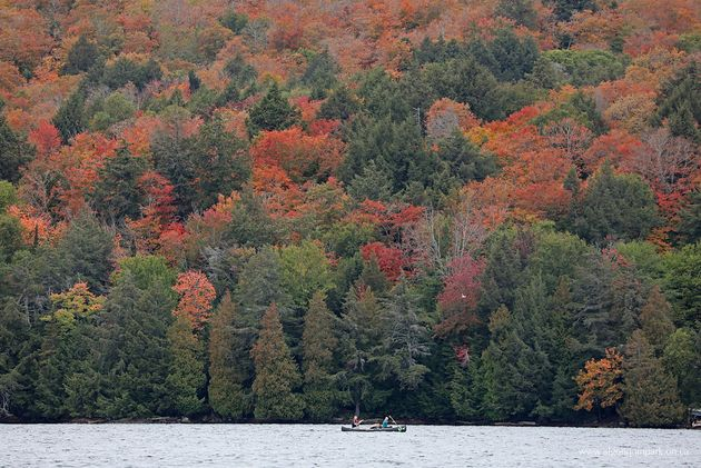 A photo taken at Algonquin Park on Sept. 30,