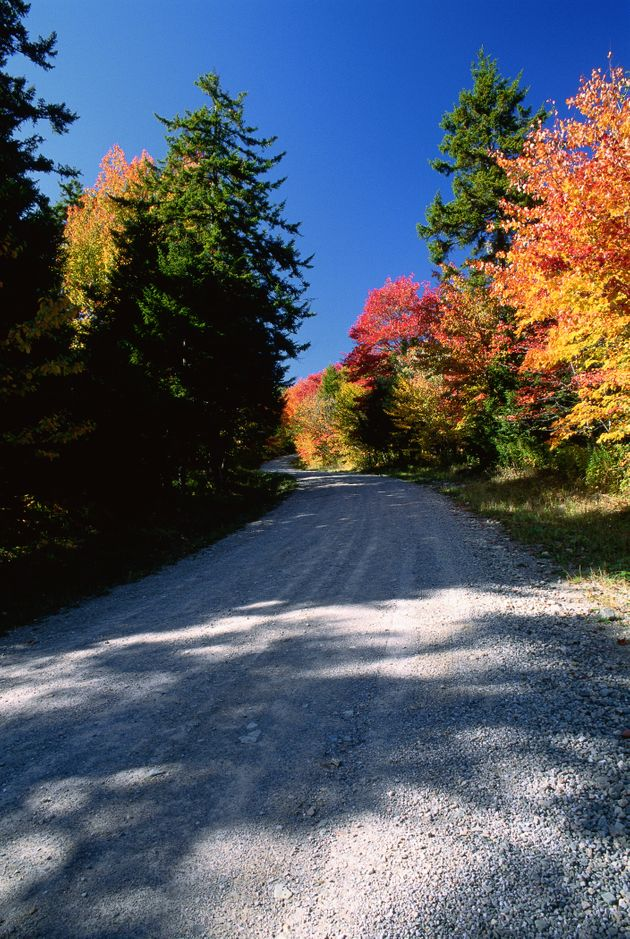 Laverty Road, Fundy National Park, New Brunswick,