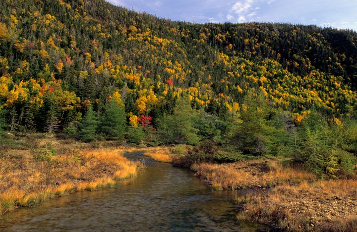 Wallace Brook Valley in the Tablelands area of Gros Morne National Park.