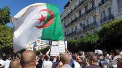 33e manifestation : Alger bat le pavé et affiche une tranquille