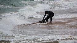 Plus d'un millier de migrants ont péri en Méditerranée depuis le début de l'année, selon le