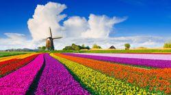 Ποιο είναι το σωστό; Ολλανδία ή Βασίλειο των Κάτω Χωρών; Όπως και να 'χει η χώρα αλλάζει
