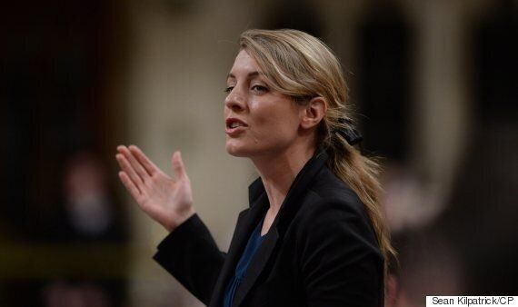 Liberals Using Consultations As Cover To Avoid Making Decisions: Tory