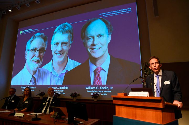 Thomas Perlmann (R), the Secretary of the Nobel Committee, speaks as the winners are announced of the 2019 Nobel Prize in Phy