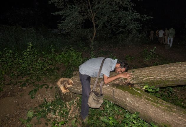 Activists cry after trees are cut at the Aarey