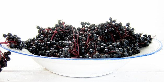 Antioxidant-Rich Elderberry Can Help with Weight