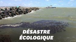 2000 km de plages brésiliennes polluées aux hydrocarbures, un désastre